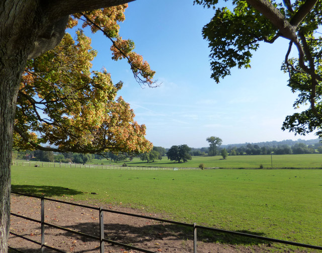 Fields Opposite The Stables