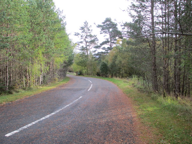 Private road to Moy Lodge