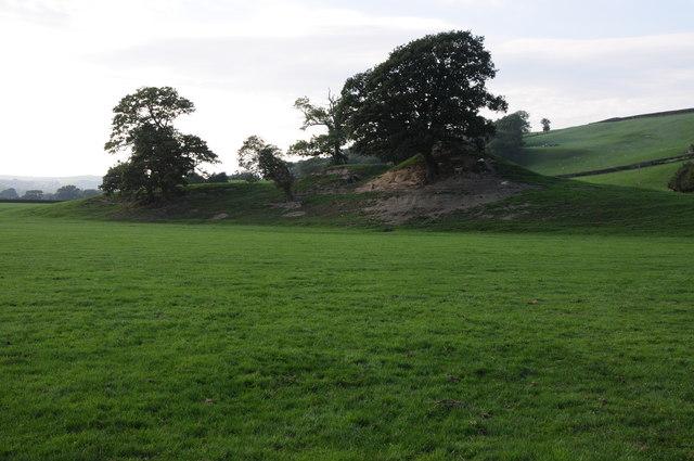 Motte and bailey near Llanerfyl