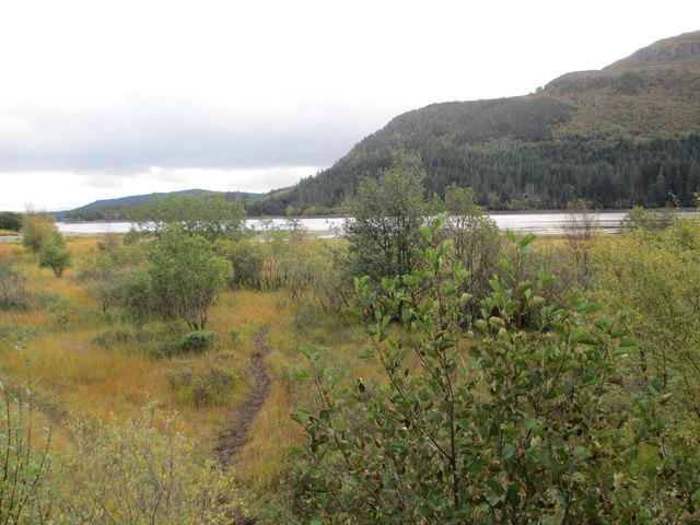 The shore of Loch Laggan