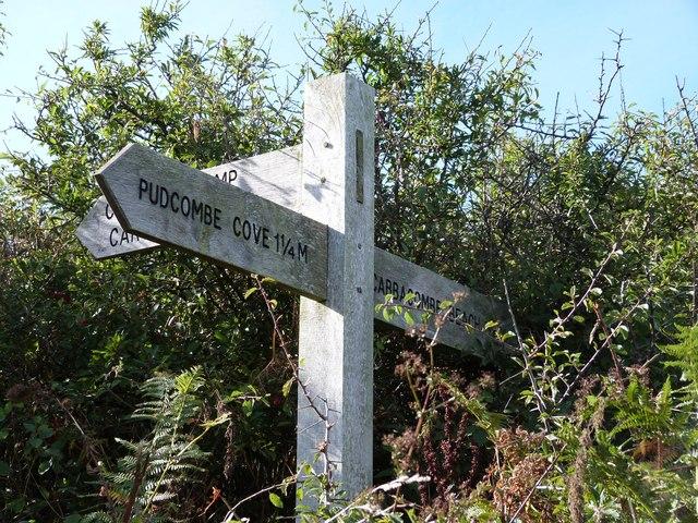 Hidden signpost, Scabbacombe Head