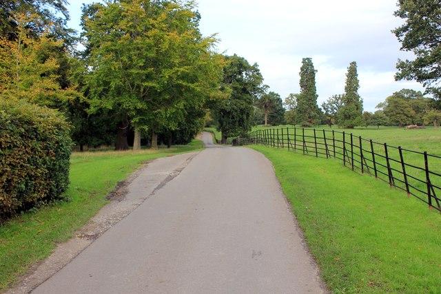 Driveway to Erddig Hall