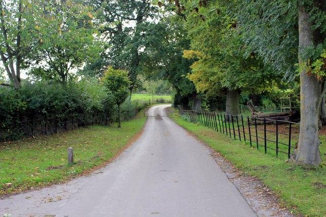 Erddig Estate Driveway