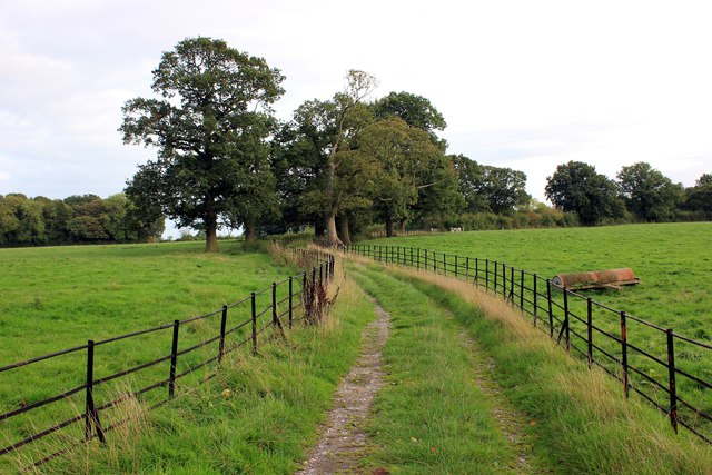 Footpath through Erddig Park
