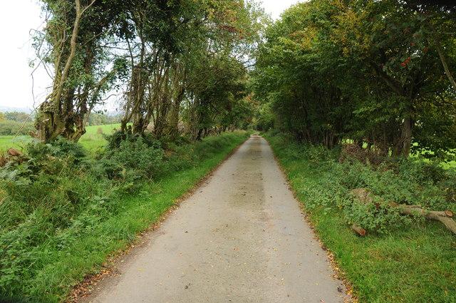 Road to Ty'n-y-twll