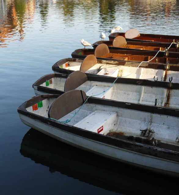 Skiffs moored by Higginson Park