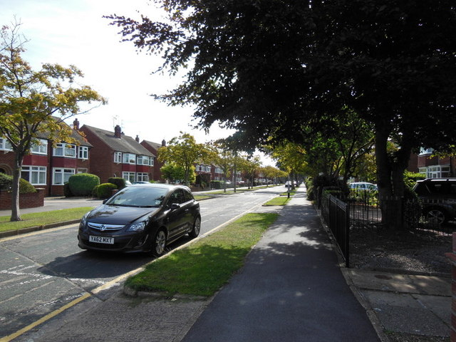 Auckland Avenue, Hull
