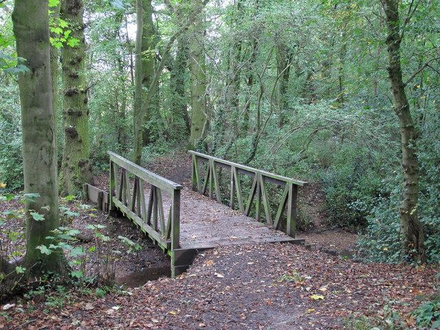 Bridge over Sandy Brook, Writtle Belt, Hylands Park