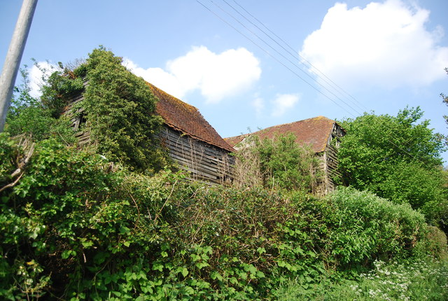 Vegetation covered barns, Smockham Farm