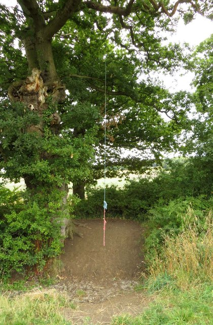 A rope swing over a ditch