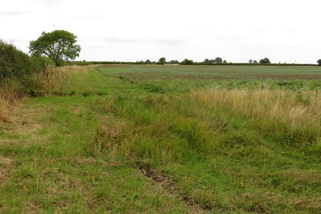 A field by Common Lane