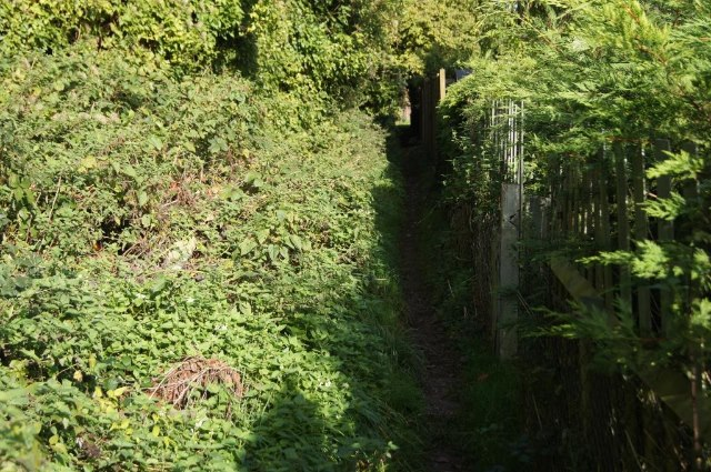 Footpath behind Water Ridges