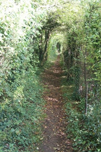 Path approaching Oakley