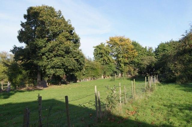 Fields off Sainfoin Lane