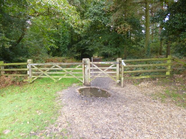 Setthorns, gates