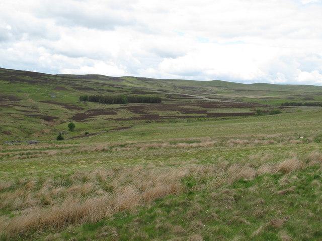 The valley of Bellshiel Burn around Ralph's Cleugh