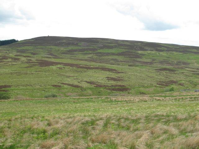 The valley of Bellshiel Burn below Dour Hill