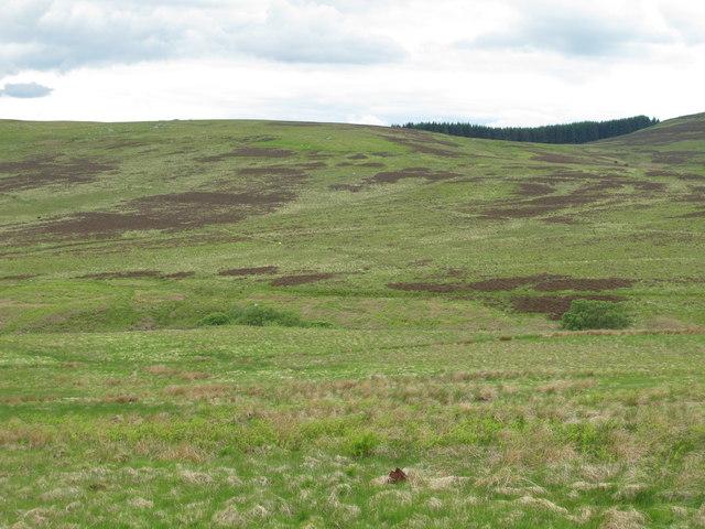 The valley of Bellshiel Burn