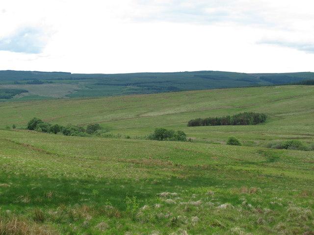 The valley of Bellshiel Burn (2)