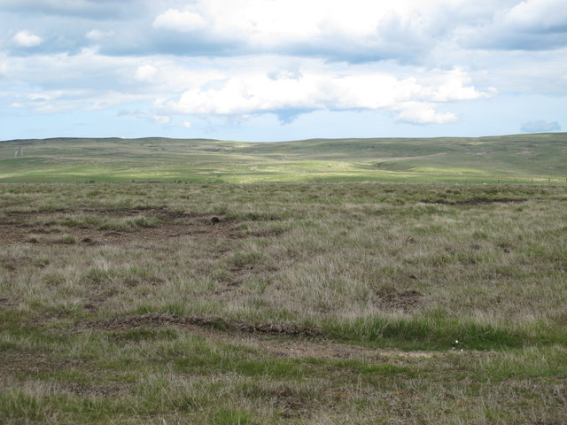 Moorland south of Branchy Sike