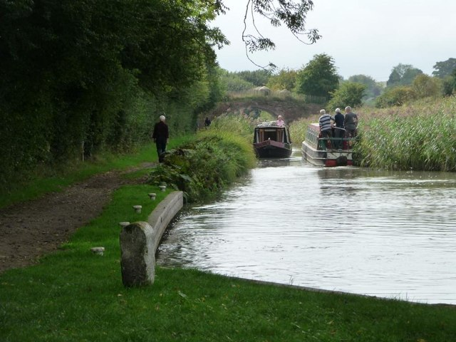 Kennet & Avon canal, narrowed by rushes