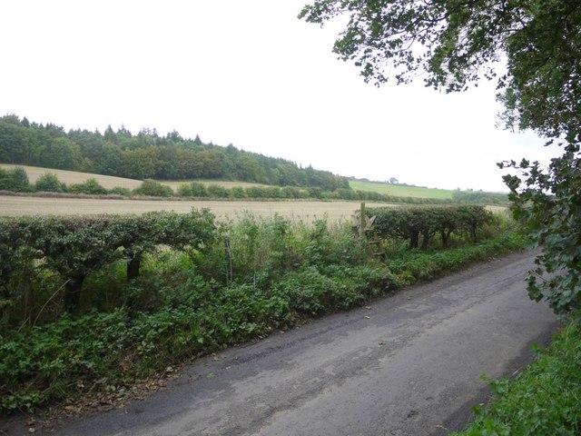 Footpath to Ovington