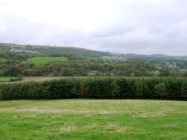 View from footpath to Ovington