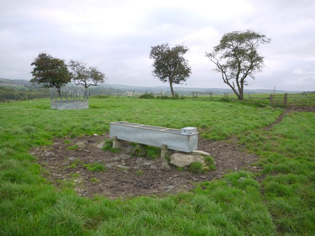 Cattle feeder and water trough near Ovington