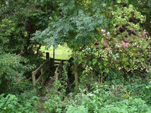 Footbridge south of Ovington