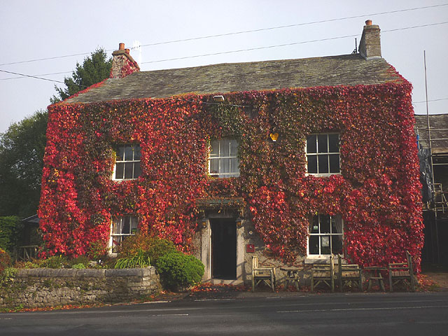 Red Virginia creeper on the New Inn
