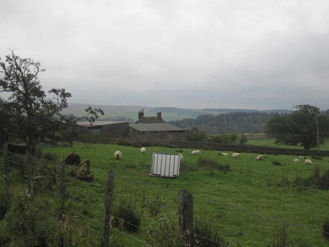 Gleedlee Farm