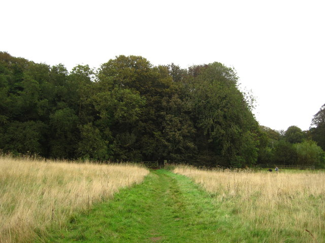 Permissive path and woodland, Bayfield Hall