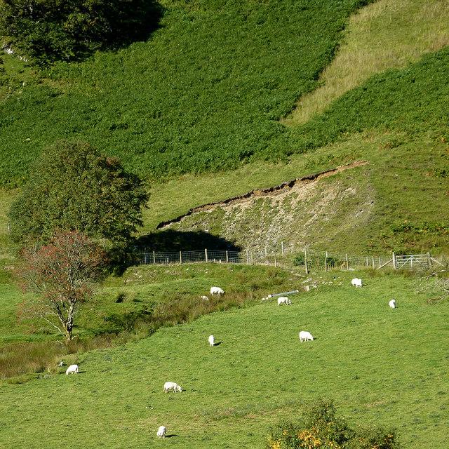 Cwm Tywi, Powys