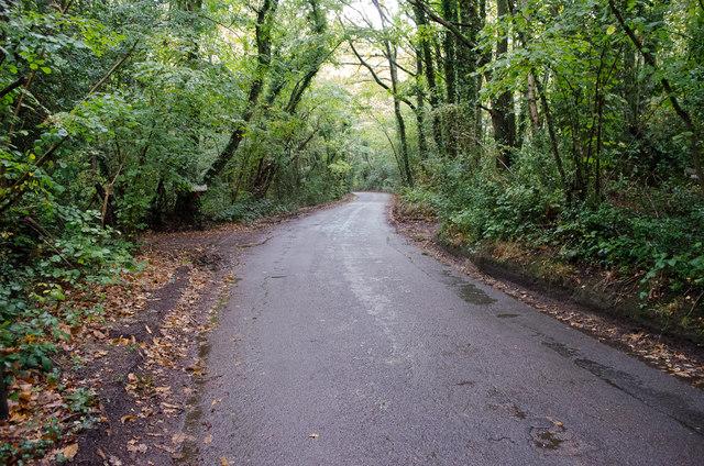 Stonestile Lane