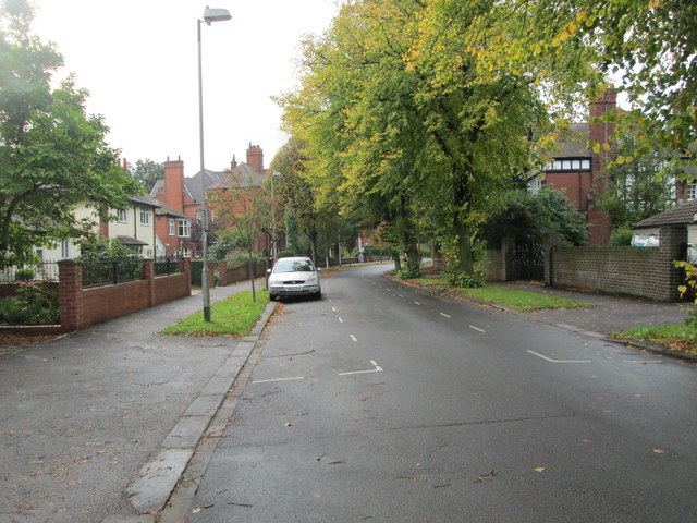 Blenheim Road - viewed from Richmond Road