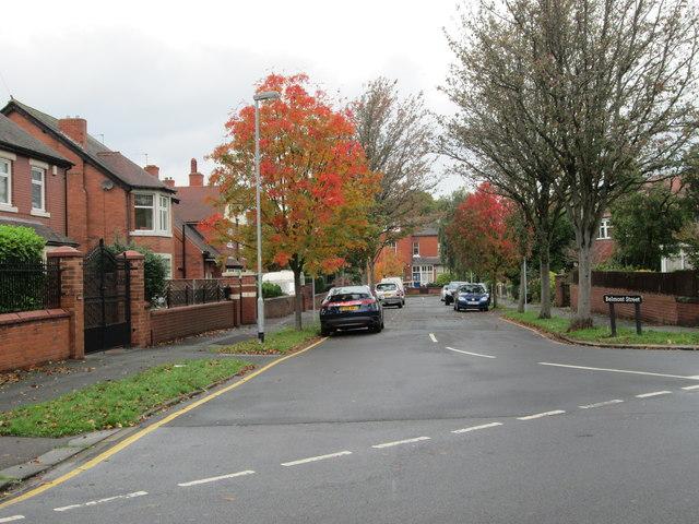 Belmont Street - Blenheim Road