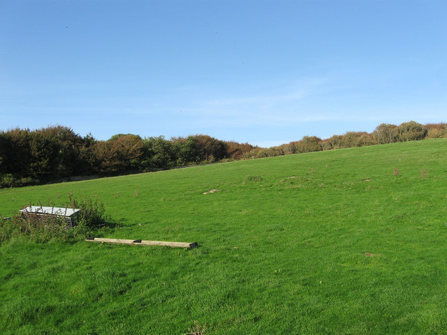 Wainhouse Field