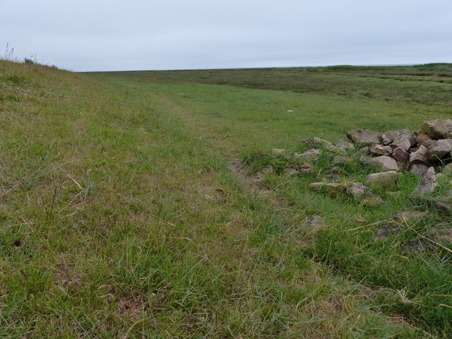 The base of the sea bank