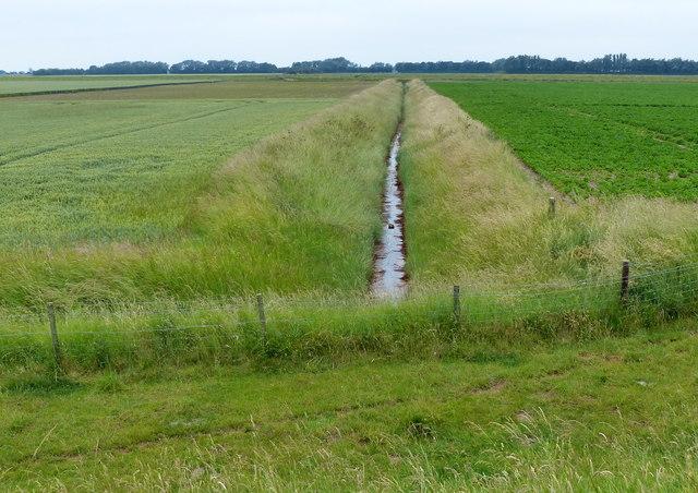 Drain and farmland
