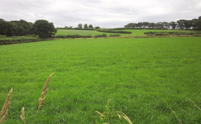 Farmland near Horralane