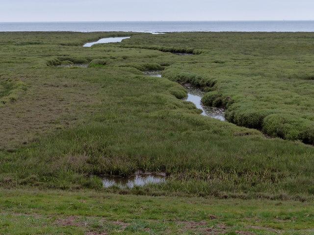 Tidal creek and salt marsh along The Wash