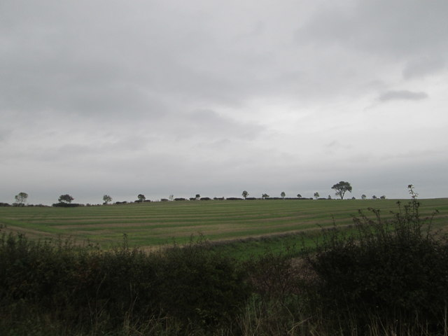 Farmlands below Spy Law