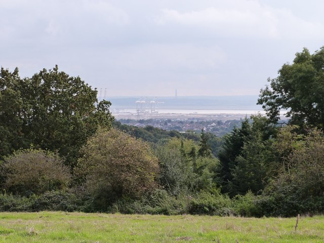 View of the River Thames from Westley Heights Nature Reserve, Langdon Hills