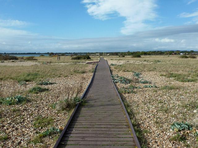 Board-walk, Pagham