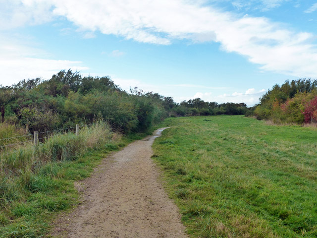 Path by Pagham Harbour