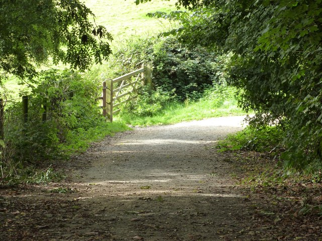 Nature Reserve path, Westley Heights,