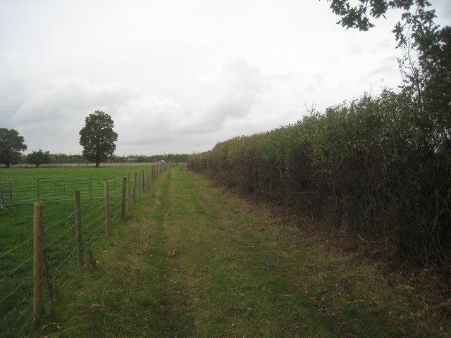 Footpath near Scotland Farm