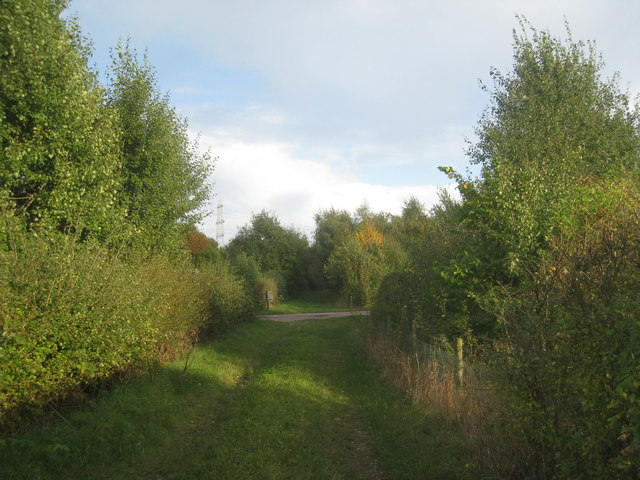 Footpath from New Lane to Whisby Hall
