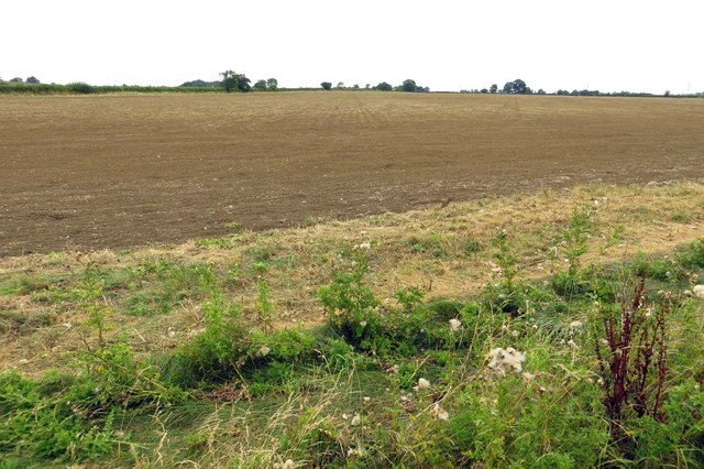 An arable field near Longworth