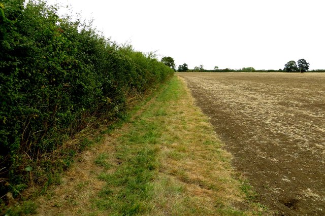 Bridleway to Newbridge